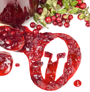 Team Radosta Healthified Cranberry